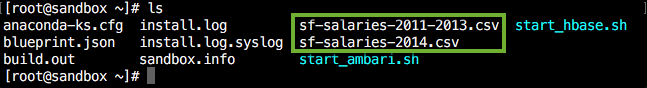 sf_salary_datasets
