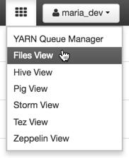 files_view