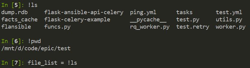 执行系统 shell