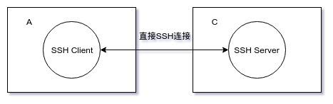 直接 SSH 连接