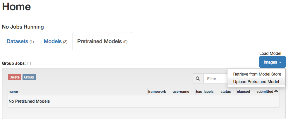 Load Pretrained Model