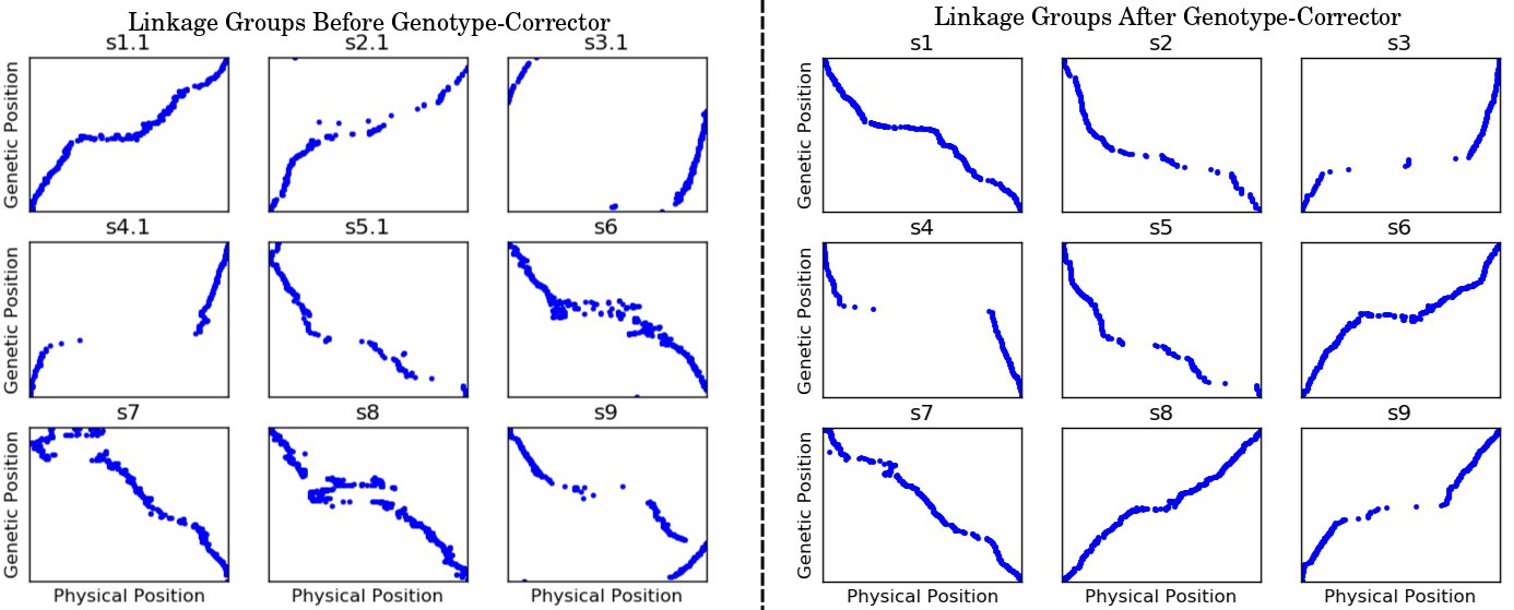Comparison between before and after using Genotype-corrector