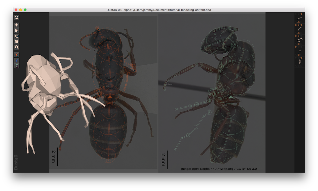 https://raw.githubusercontent.com/huxingyi/dust3d/master/docs/examples/modeling-ant/modeling-ant-dust3d-screenshot.png