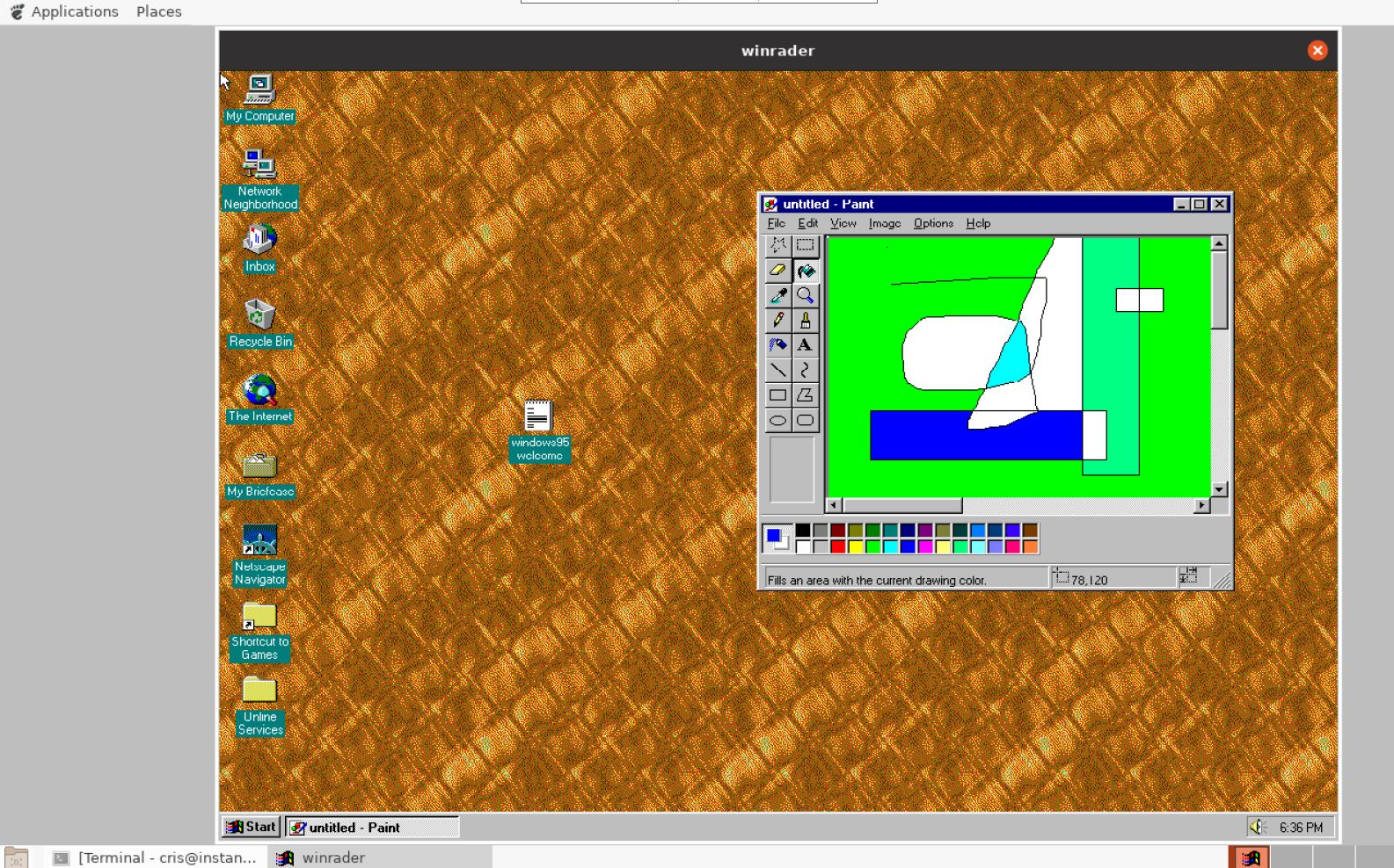 winrader running Windows 95 on Ubuntu