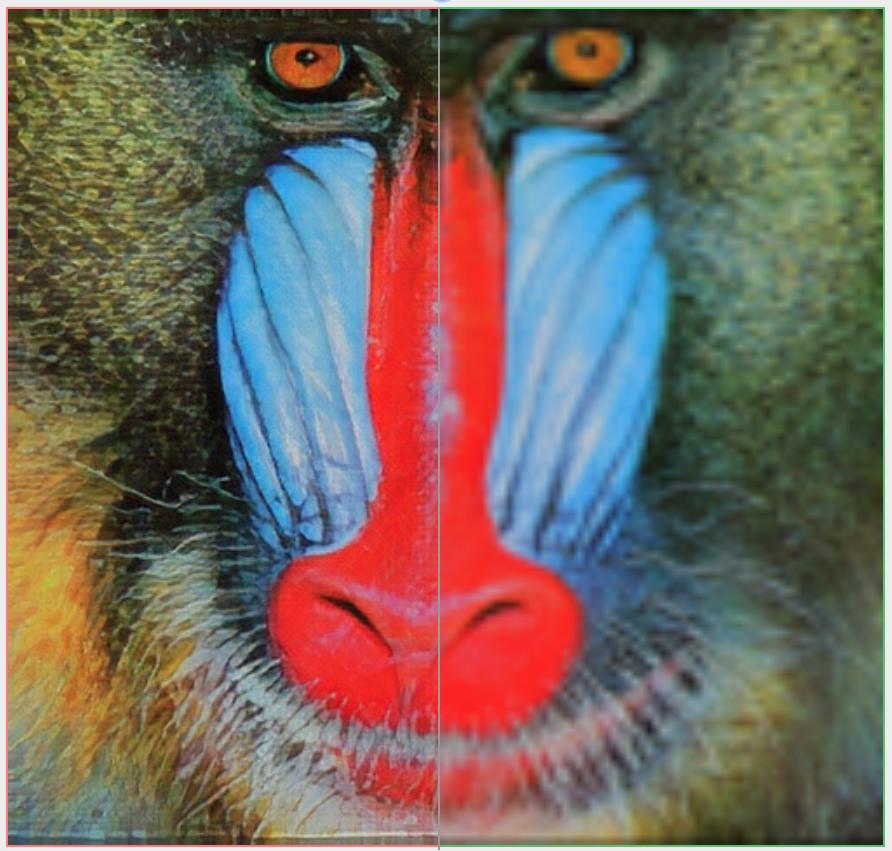 baboon-comparison