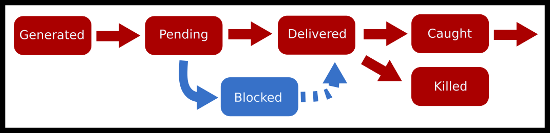 Signal lifecycle diagram