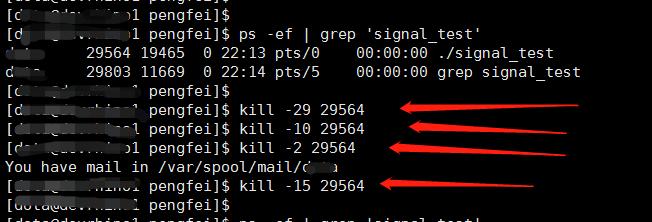使用 kill 命令发送信号