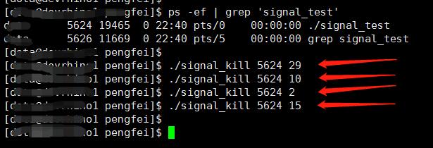 运行脚本发送信号