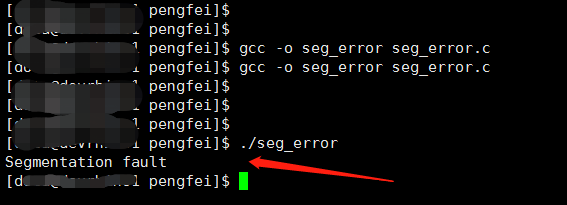 Segmentation fault 报错截图