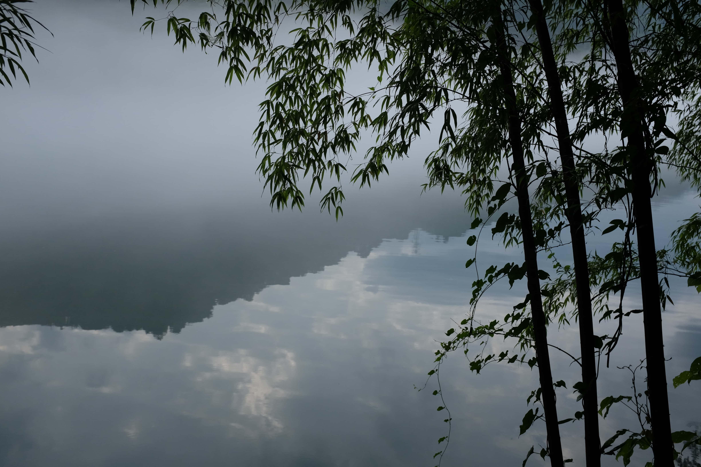 雾漫小东江之三