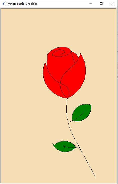 玫瑰花运行结果