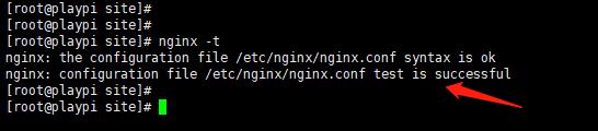 Nginx 配置项检测