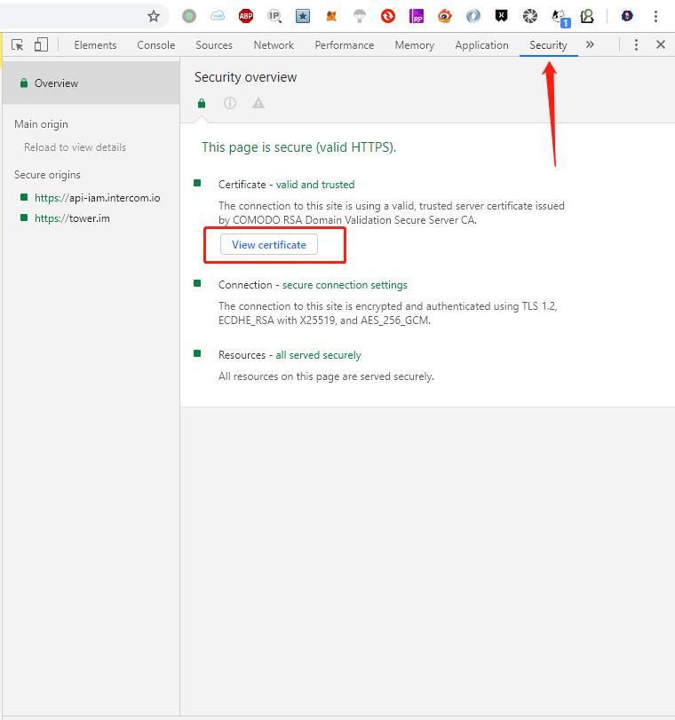 浏览器调试工具的 Security 标签