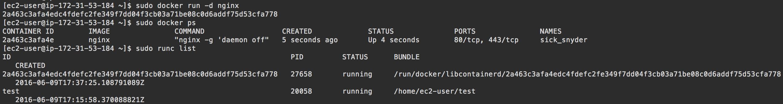 Comparing Docker to Runc