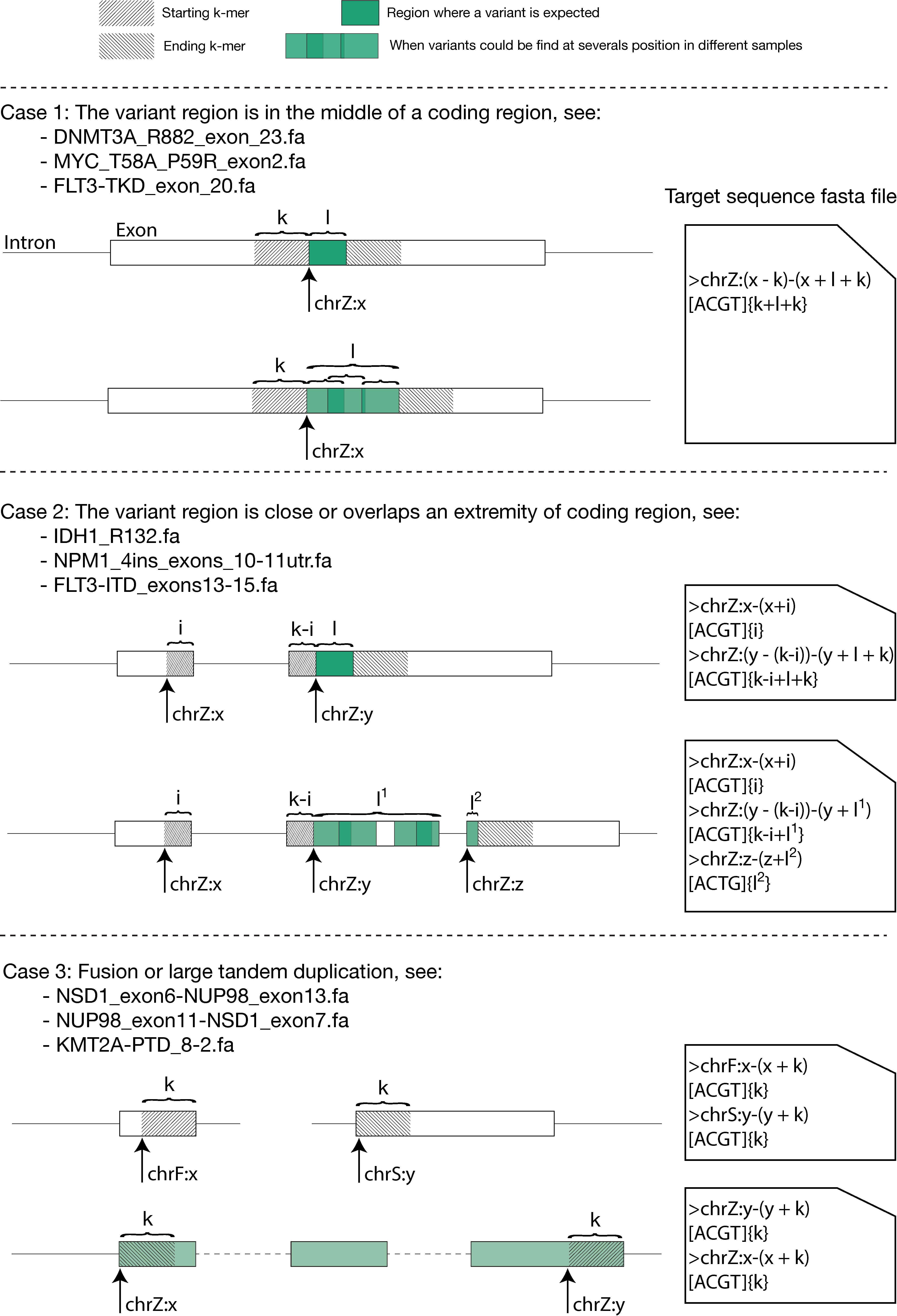 https://github.com/iric-soft/km/blob/master/data/figure/doc_target_sequence.png