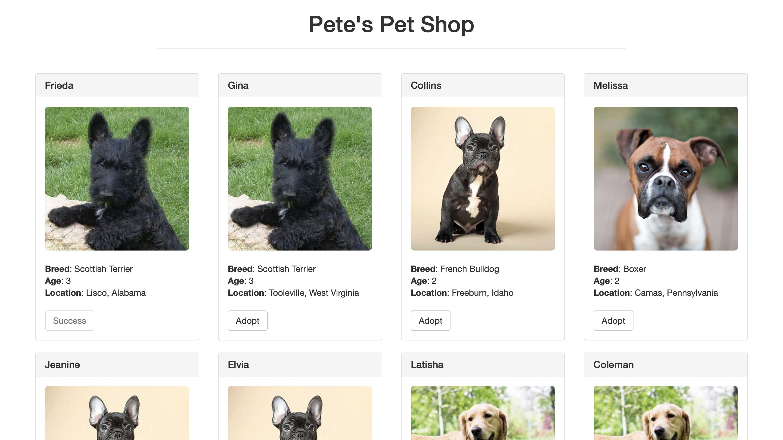 PetStore - 宠物商店