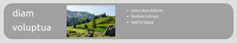 screenshot Jumbotron Text & Pic