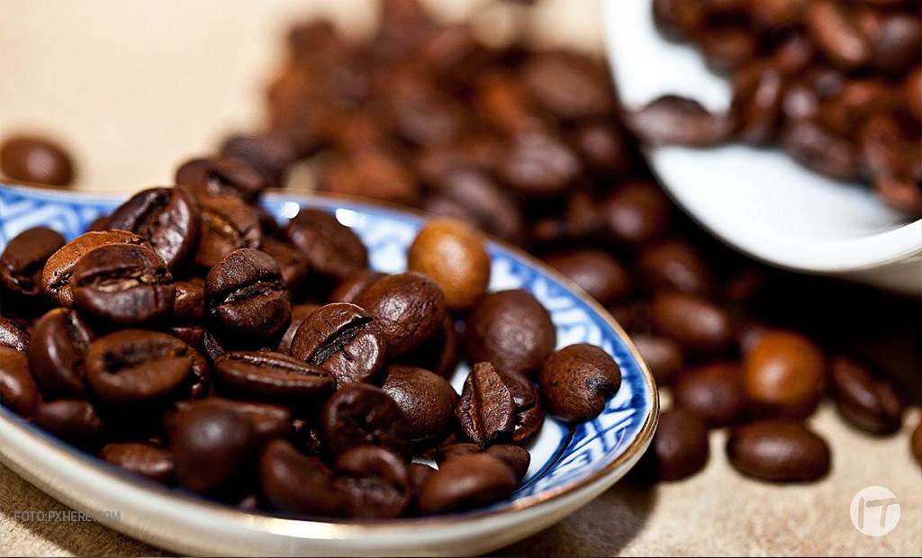 Heifer International e IBM trabajan con productores de café y cacao en Honduras para promover acceso a datos y mercados globales