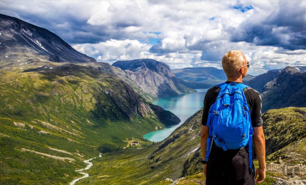 ¿Qué es el m-commerce y cómo está impactando el turismo?