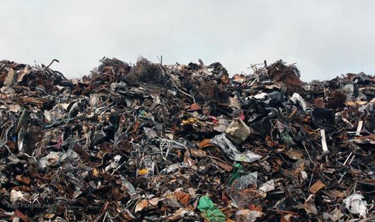 Telefónica | Movistar celebra el Día de la Tierra con más de 100 toneladas de residuos recicladas en el último año