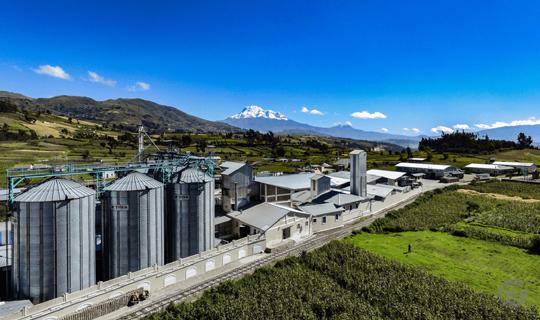 Mejora de procesos internos y eficiencia operativa: así aprovechan la tecnología las empresas en Ecuador