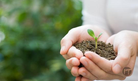 Día Mundial del Medio Ambiente: ¡A conservar la naturaleza que nos rodea!