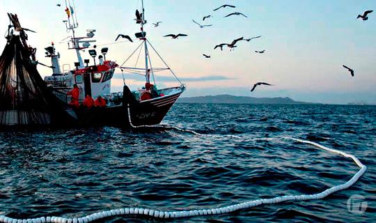 La Agencia Europea de Control de la Pesca confía en Unisys para ayudar a preservar las reservas de pescado