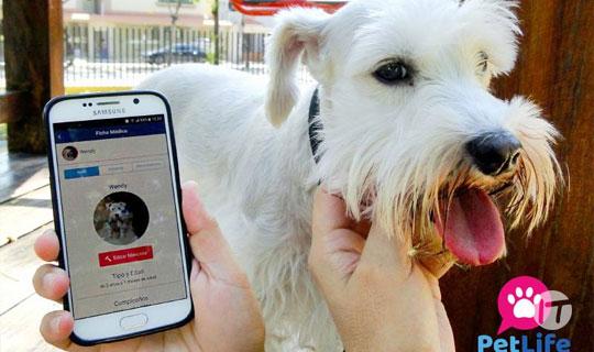 PetLife, una app que promueve el cuidado y ayuda para mascotas
