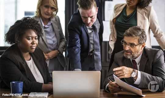 Sin jefes, así es la nueva cultura laboral creada por Findasense que involucra más a sus empleados
