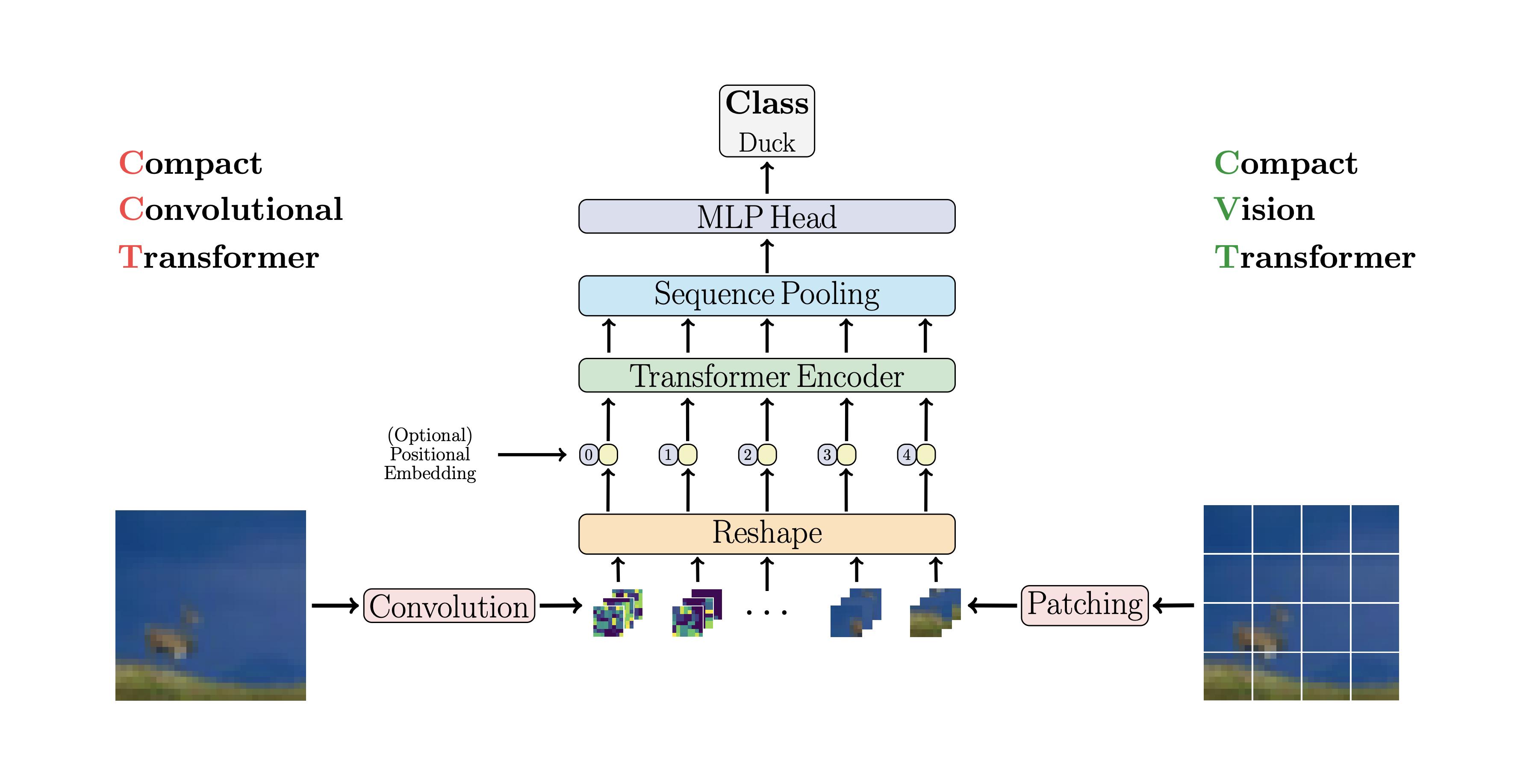 Compact Convolutional Transformers