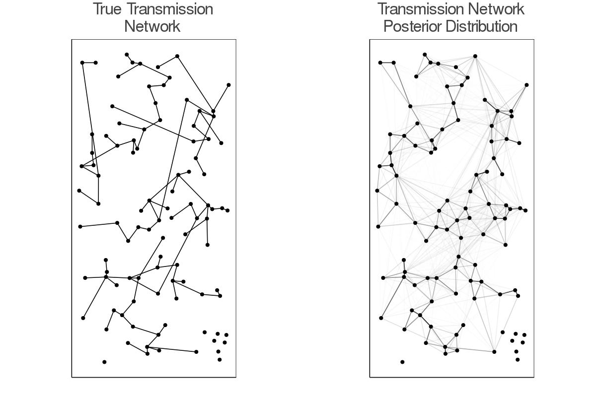 Posterior Transmission Network