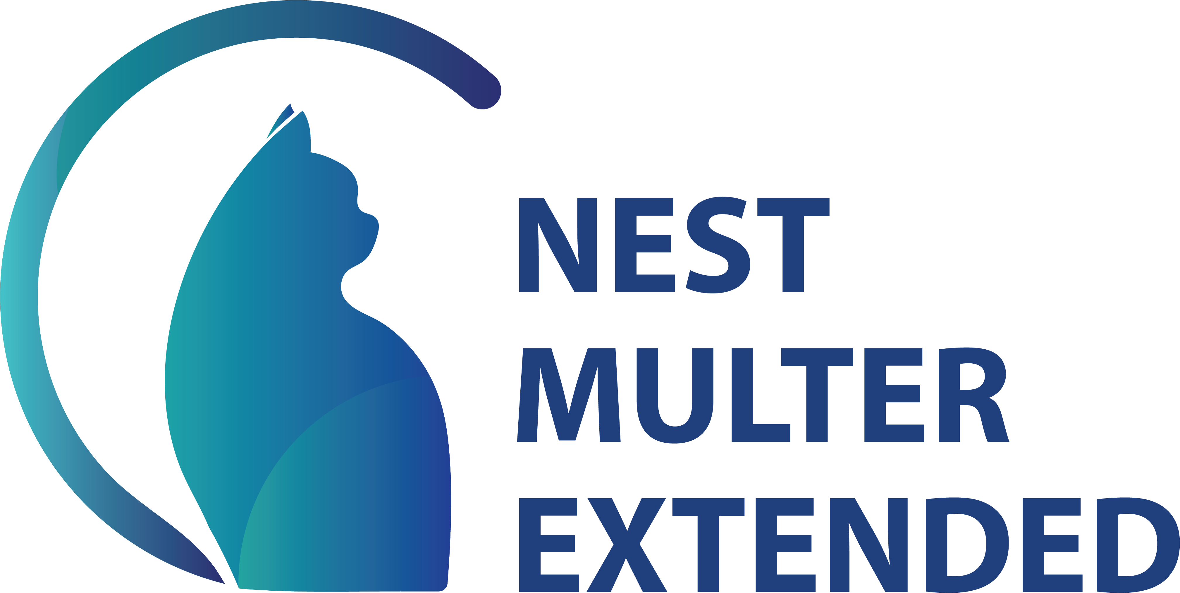 NestJS Multer Extended Logo
