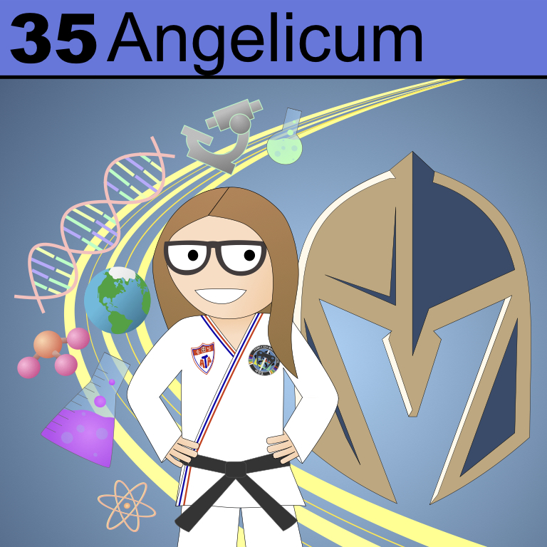 Element 35 from the Periodic Tabel of Patrons: Angelicum.