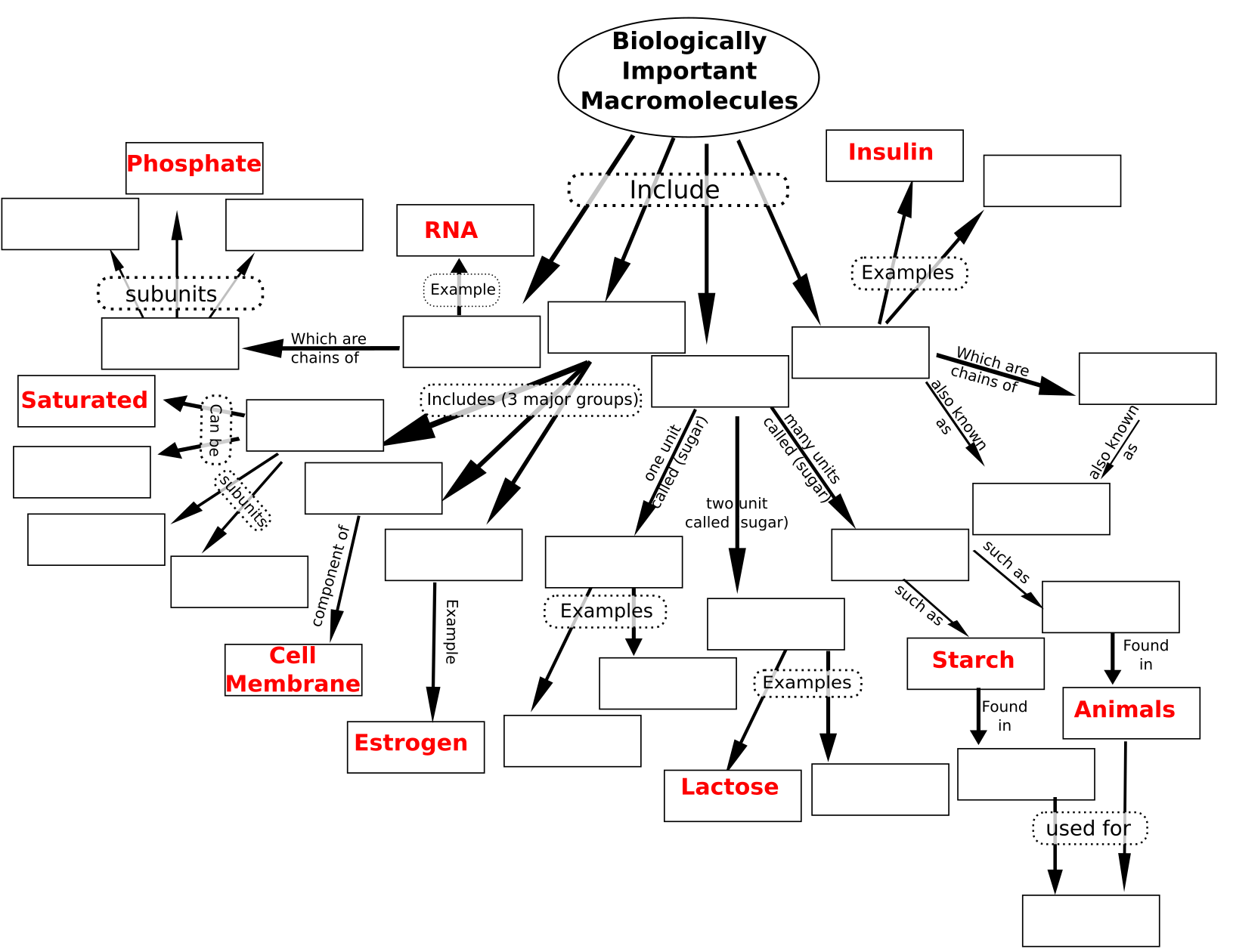 Concept Map Of Macromolecules.Biological Macromolecules Concept Biology Oer