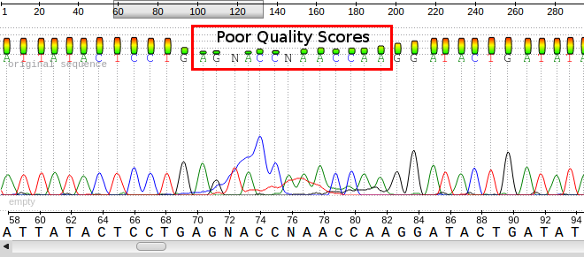 Sequencing Quality