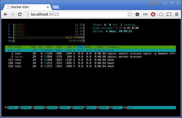 Docker-SSH Web Terminal