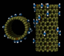 modified nanotubes
