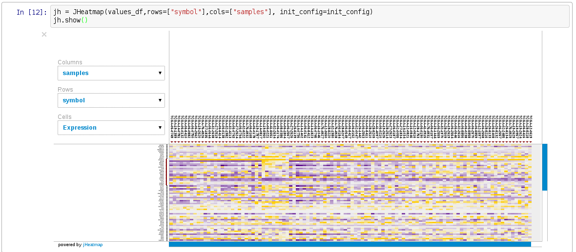Image of jHeatmap in iPython Notebook