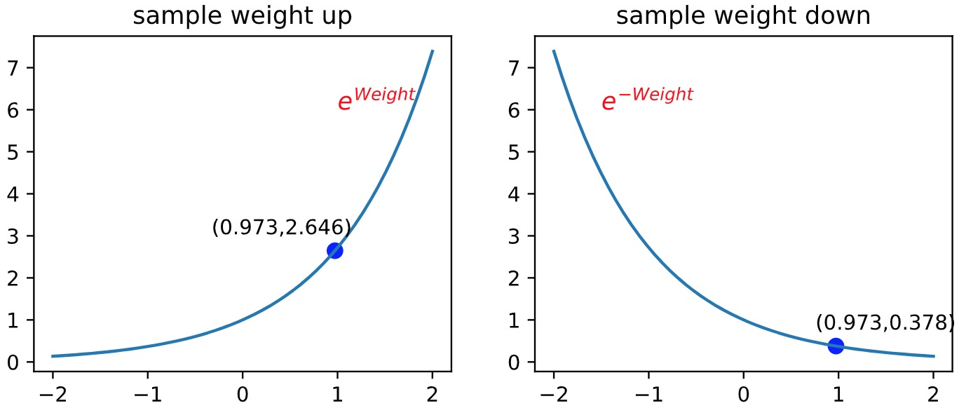 sample_weight
