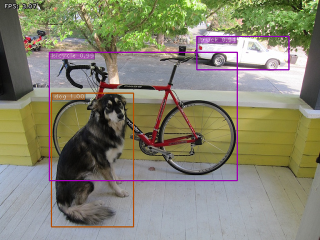 Dog, bicycle and truck detected