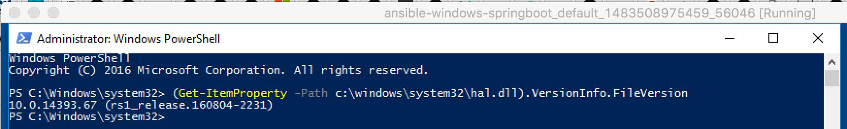 Windows_build_number_Docker_failing