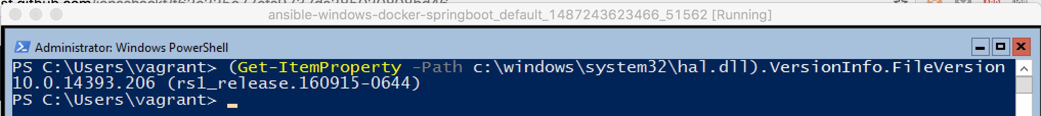 Windows_build_number_Docker_working