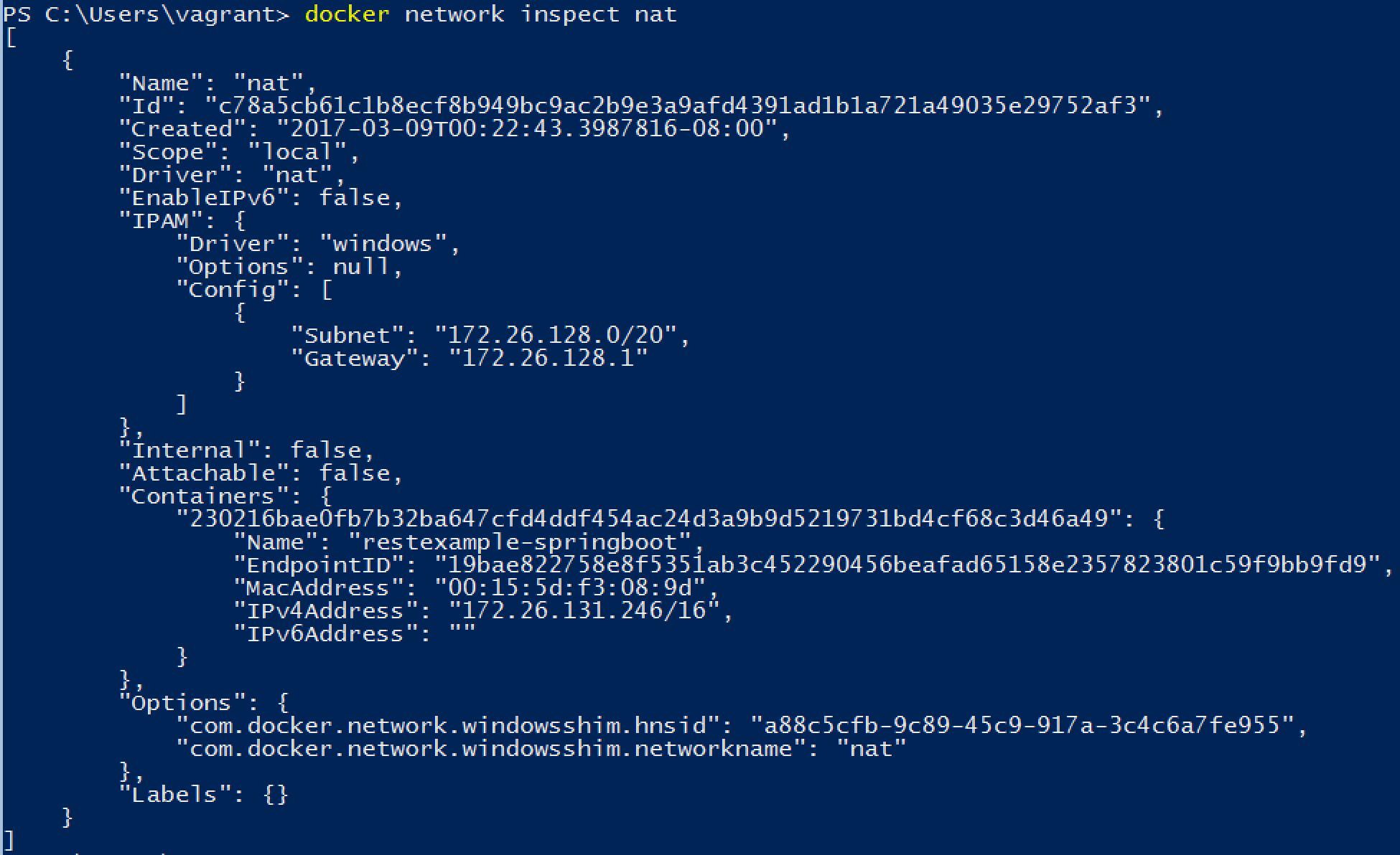 docker-network-correct-nat-config