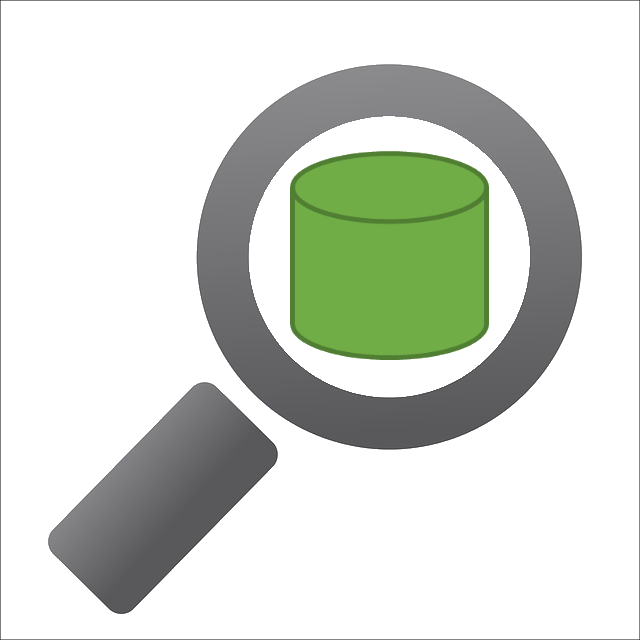 Insight.Database icon