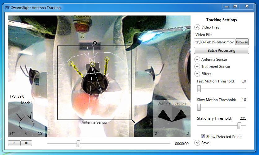 SwarmSight Antenna and Proboscis Tracking Software