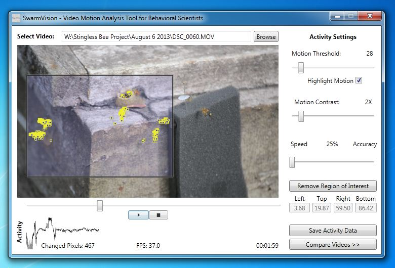 SwarmSight Activity Assessment Software