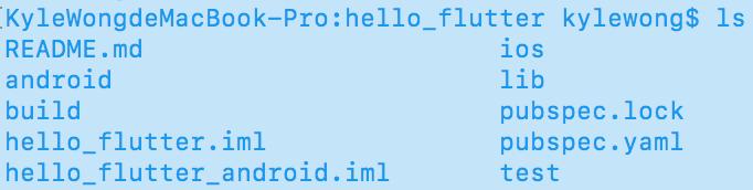Flutter File Structure