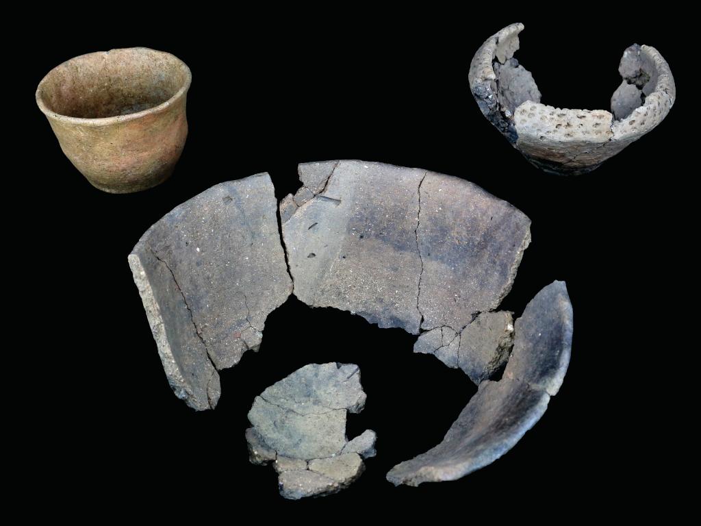 Photography for Headland Archaeology [CW: Skulls]