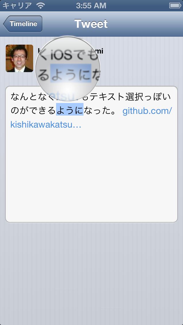 iOS ScreenShot 3