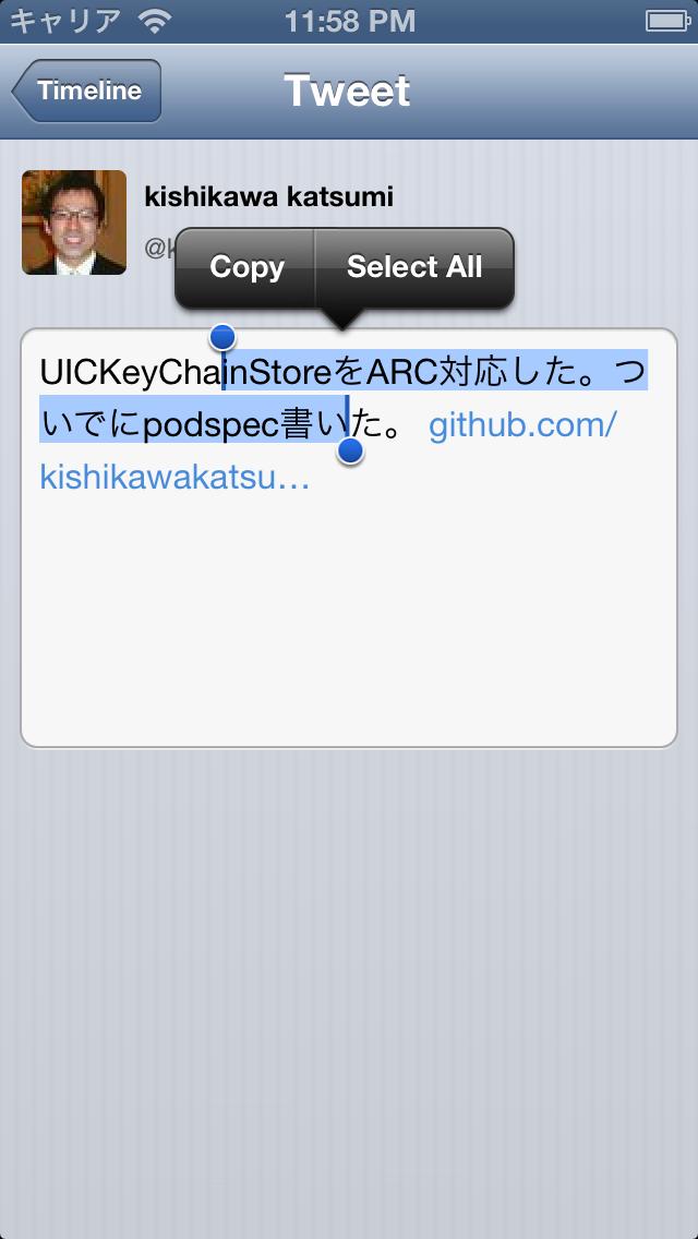 iOS ScreenShot 5